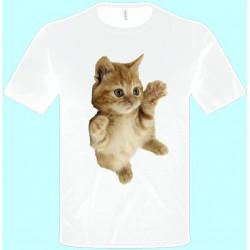 e6eb1ba57a84 Tričká s potlačou zvierat - Mačiatko (pánske tričko)
