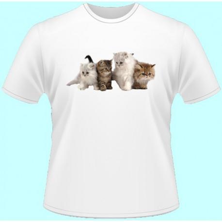 Tričká s potlačou zvierat - Mačky (dámske tričko)