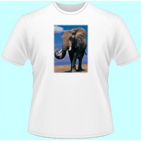 Tričká s potlačou zvierat - Slon (dámske tričko)