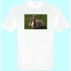 Tričká s potlačou zvierat - Lama (pánske tričko)